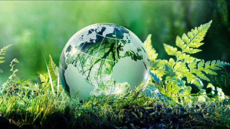 La Fundación ASLA certifica su sistema de gestión medioambiental